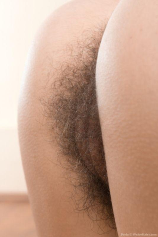 Гибкая красотка показывает волосатые дырочки крупным планом - фото